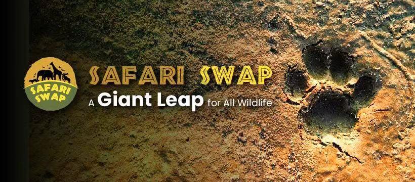 SafariSwap: Using DeFi To Save Wildlife