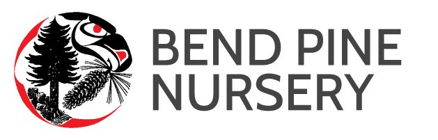 Bend Oregon's Leading Source for Landscaping Trees Bend Pine Nursery Launches Information Packed new Website