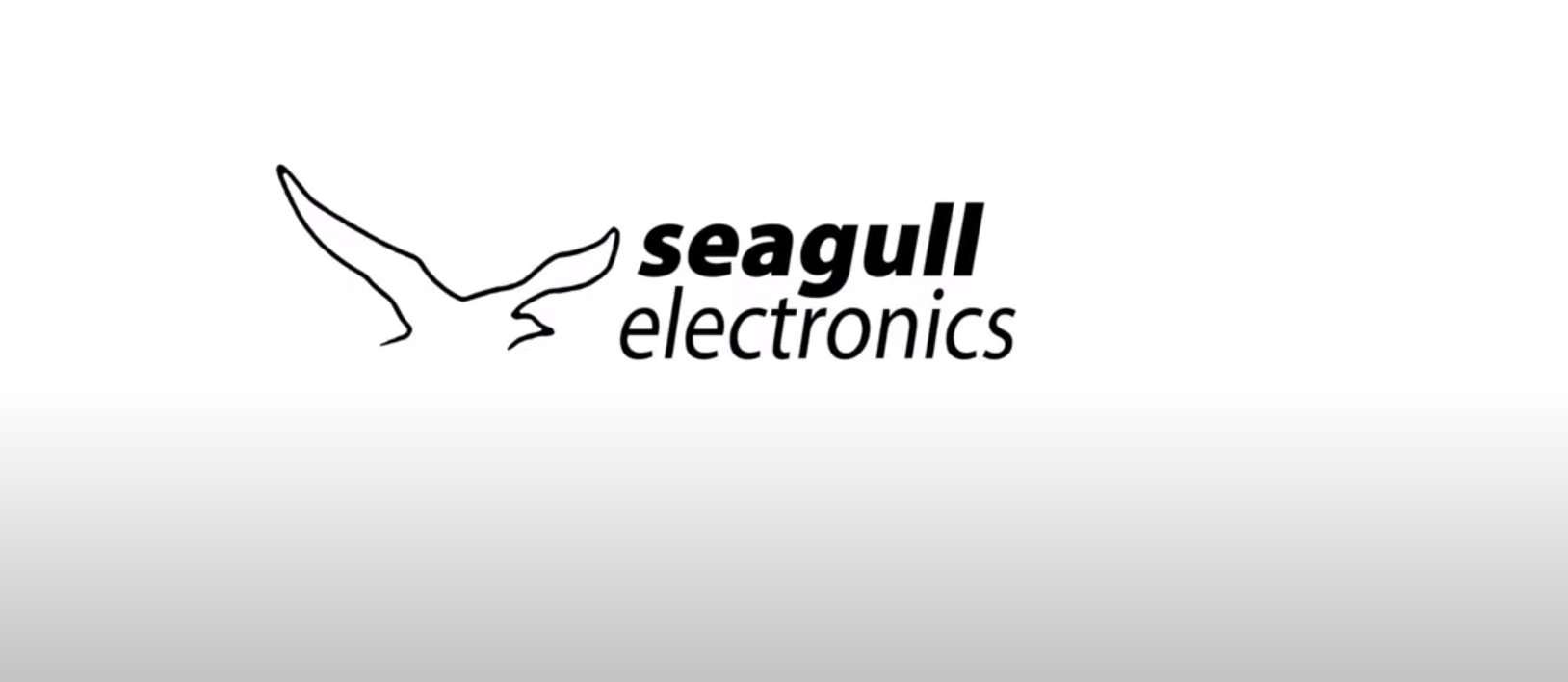 Seagull Electronics Highlights Key Home Automation Solutions