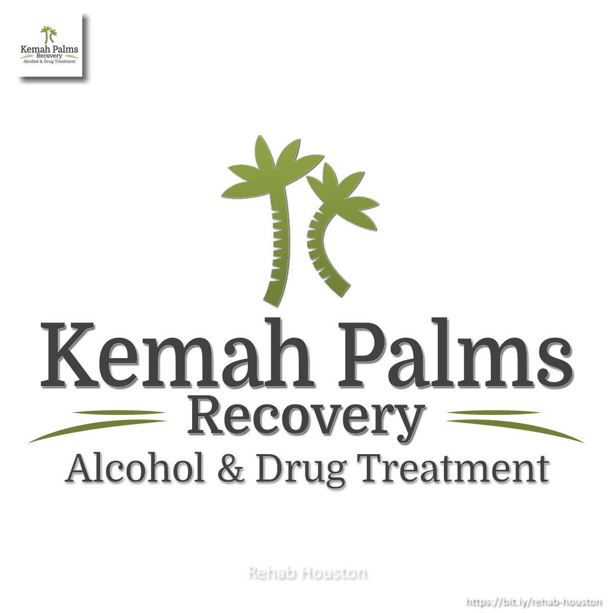 Kemah Palms Recovery - Alcohol & Drug Treatment Mentions Services That People Can Get