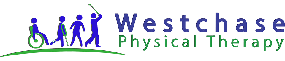 State the art drug-free quality therapy service with Westchase Physical Therapy