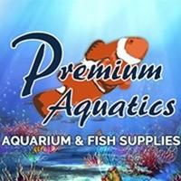 Premium Aquatics Outlines the Factors to Consider When Buying an Aquarium