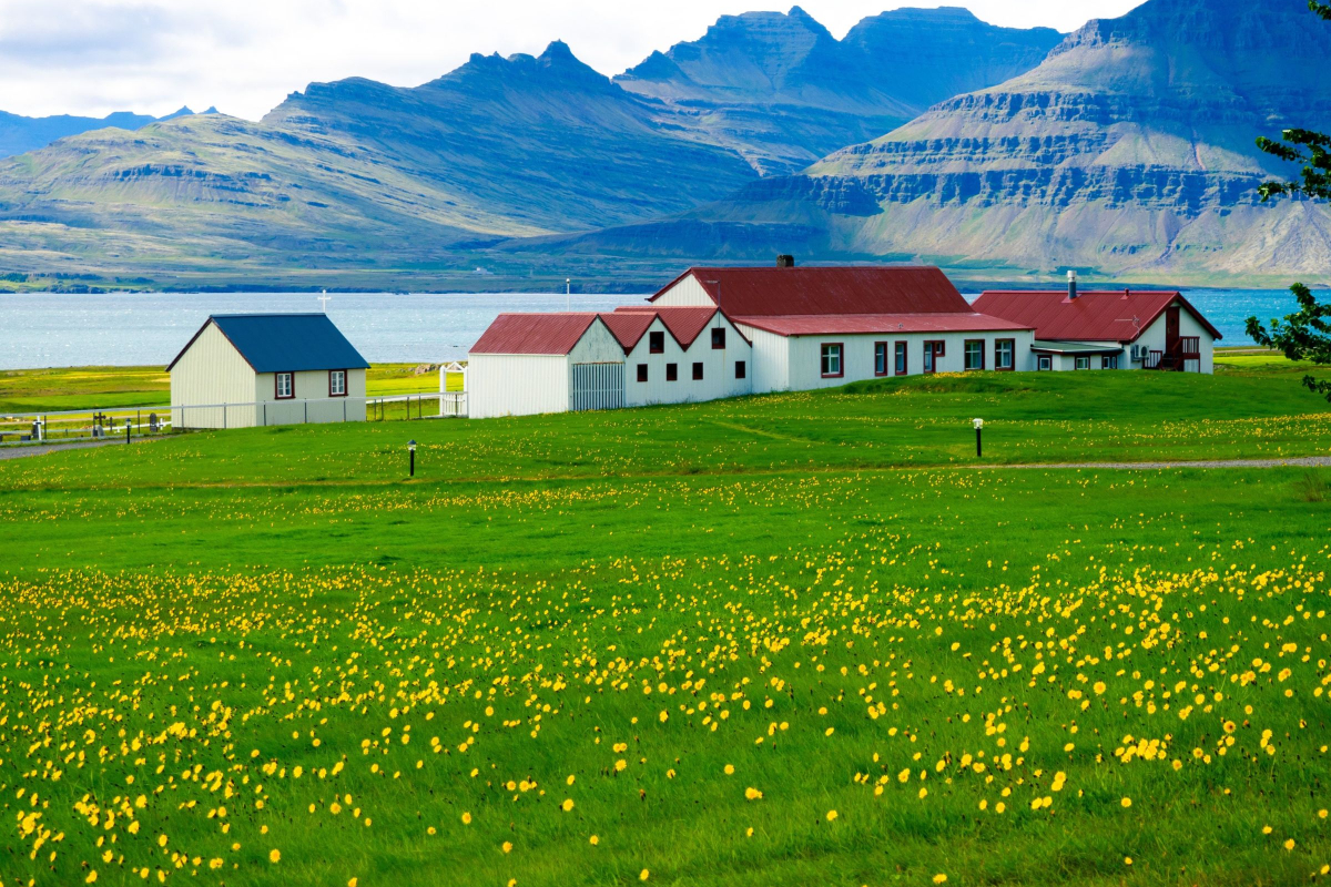 Realtimecampaign.com Suggests Getting an Iceland Travel Guide to Help Plan a Vacation
