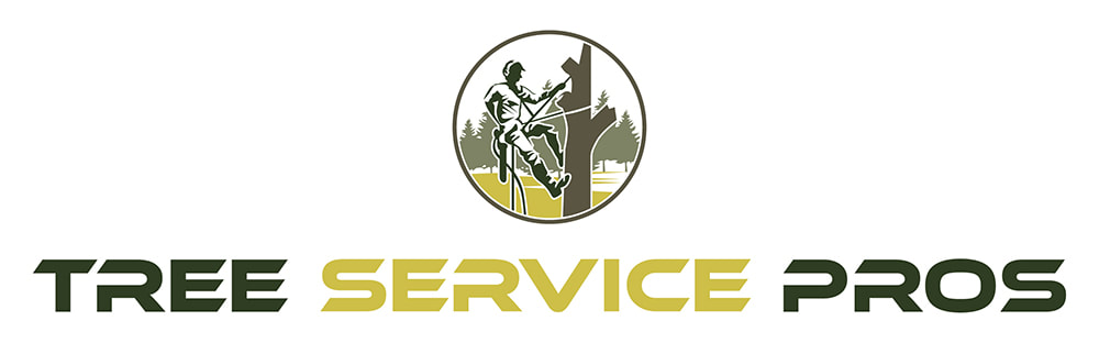 Tree Service Pros of Plano Highlights the Signs for Calling Professional Tree Removal Services
