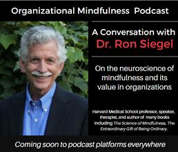 Brett Hill, Somatic Mindfulness & Communications Coach, to Host Organizational Mindfulness Podcast