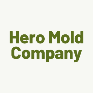 Hero Mold Company Shares the Reasons to Hire a Professional Mold Removal Company